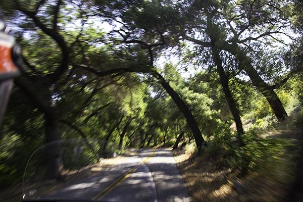 De Luz Road