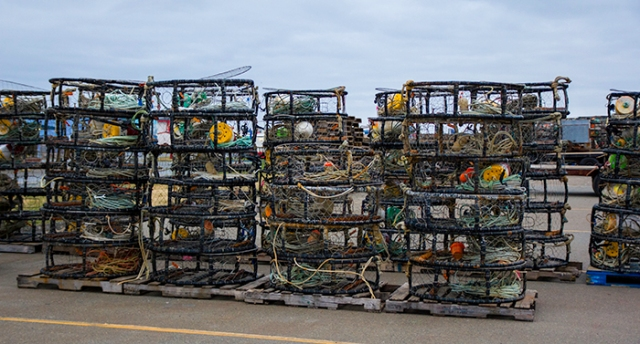 fishing gear at the harbor