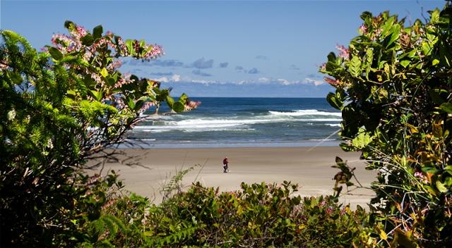 peek at Oregon coast