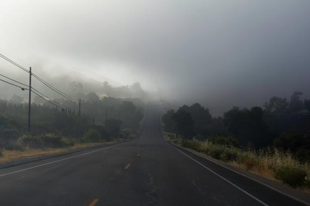 fog on 94 East