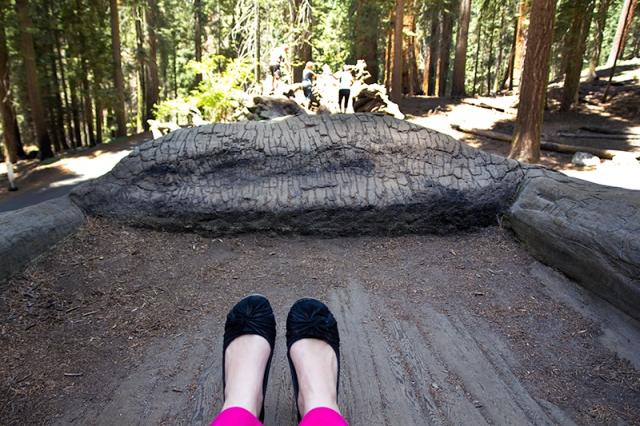 my feet on the Auto Log