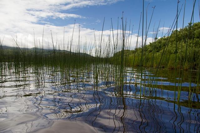 Lake Lytle