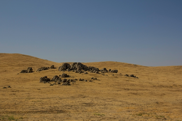 field along road 155