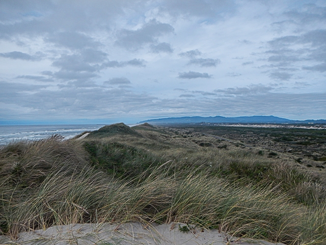 Oregon Dunes - by Caleb