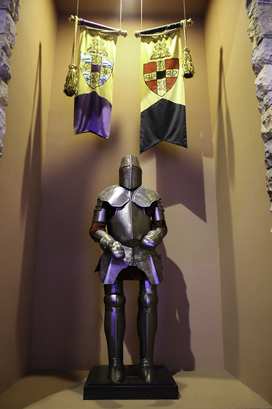 a knight in Excalibur