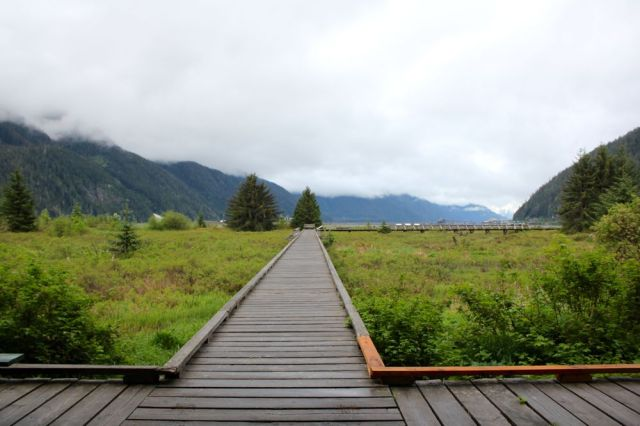Estuary Boardwalk, Stewart, BC