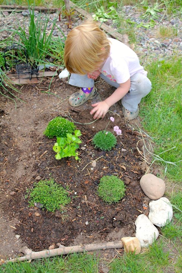 Lyra in the fairy garden