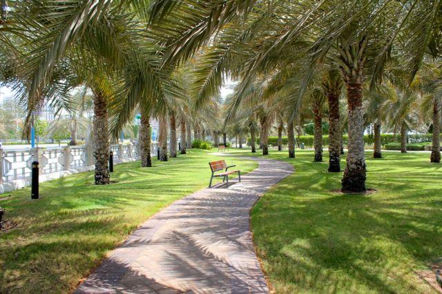 walking along the Corniche